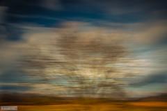 Code orange (Anneke Jager) Tags: annekejager icm canon concept mood moody landscape landschap longexposure