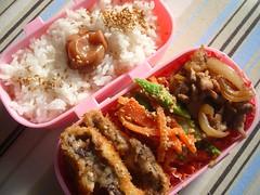 IMGP1734 (FromEast2005) Tags: bento japanesefood lunchbox ume   umeboshi