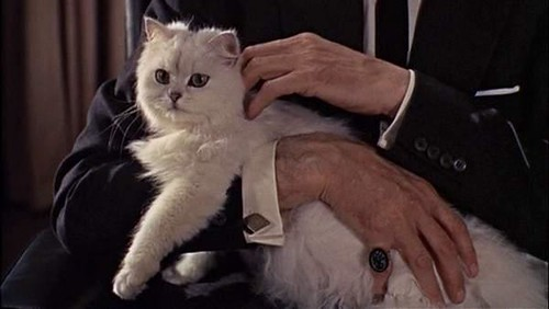 Ernst Stavro Blofeld, CEO of SPECTRE. He expects you to die, Mr Bond