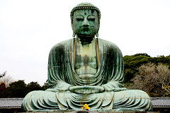 Daibutsu, the great Buddha of Kamakura, Japan (fabriziogiordano23) Tags: travel holiday statue japan asia buddha kamakura great daibutsu nippon statua japon soe giappone ohhh wow1 beautifulphoto totalphoto flickraward flickrestrellas spiritofphotography