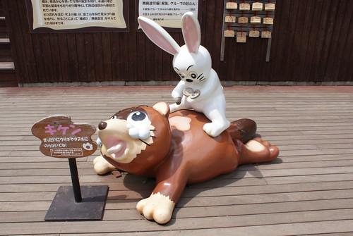 タヌキのやけどにトウガラシを塗るウサギ