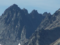 Zoom of Seven Fingered Jack