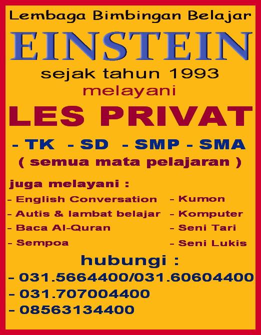 lembaga pendididkan Einstein