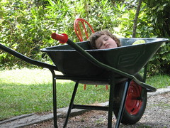 Papino, ti aiuto io! (diemmarig) Tags: dreaming hardwork dormebeata