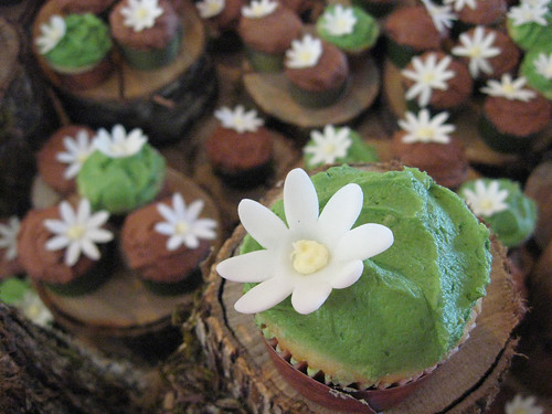 rustic green and brown wedding cupcakes a photo on Flickriver