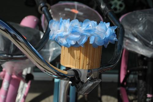 venice beach bicycle