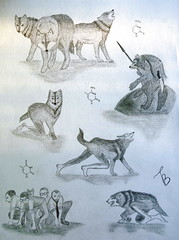 Metamorphosis (Enigma911) Tags: animal werewolf wolf drawing evolution human fantasy dna packofwolves genetics metamorphosis  mutation