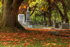 Fall Colors in Ross bay Cemetery (Brandon Godfrey) Tags: world pictures autumn trees orange canada tree fall halloween colors beautiful grave graveyard grass leaves wonderful season landscape photography photo amazing fantastic scenery colorful colours peace bc shot photos shots pics earth britishcolumbia sony cemetary scenic picture headstones peaceful pic scene images victoria graves vancouverisland serenity creativecommons pacificnorthwest northamerica rest colourful unreal alpha dslr incredible 2009 hdr fairfield outstanding ruleofthirds a300 photomatix rossbaycemetery gamewinner tonemapped tonemapping thechallengegame challengegamewinner dslra300 sonya300 100commentgroup pregamesweepwinner