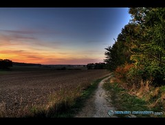 Sonnenuntergang am Wegesrand (mcPhotoArts) Tags: autumn trees sunset sky nature field germany landscape bayern deutschland bavaria sonnenuntergang dorf village sundown herbst natur feld himmel bluehour landschaft bushes bume shrubs hdr hdri feldweg a9 abendrot blauestunde geotagging dirtpath photomatix carttrack strucher ortschaft abendrte canoneos400d theunforgettablepictures sigma1770mm2845dcmacro photoshopcs4 westerhofen bumblebeephotografix