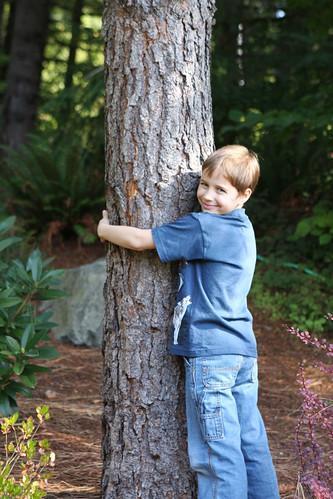 My Little Tree Hugger with his Ponderosa Pine