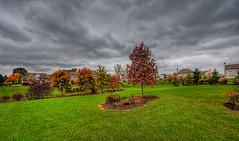 A Beautiful Cold Fall Day (David Alan Robillard) Tags: sky fall clouds nikon d3 1424