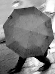 umbrella (Frosty Crystalline) Tags: tallin estoniaoldtowncobbles rooframpartsrainandumbrellas