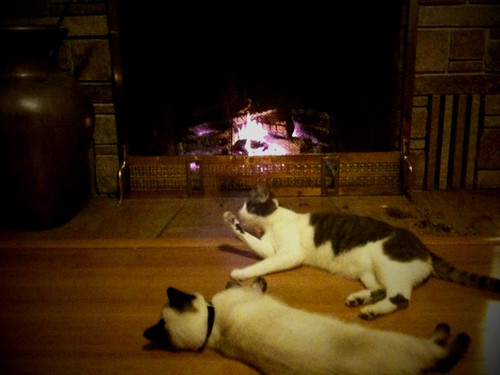 2 by the fire