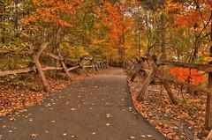 The Autumn Path (the waterfallhunter) Tags: county autumn fall path nikond50 lori walden cherokee hdr dekalbcounty fortpaynealabama littleriverfalls littlerivernationalpreserve