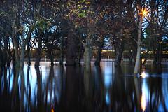 Flooding -  Duff House Royal Golf Course, Banff (craigr (Craig Scott)) Tags: house water rain river golf scott scotland high flooding aberdeenshire flood royal course craig banff burst heavy 2009 rainfall duff banks severe craigr deveron banffshire