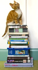 Outtake: Barney (evilibby) Tags: ginger sitting books barney mybedroom gingercat readinglist bookstack stackofbooks bookpile pileofbooks gingerkitten barnabee
