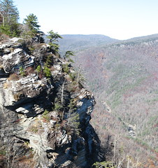 Linville Gorge, looking north