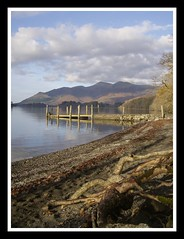 Foreshore For Sure (Richie B.) Tags: lake district jetty roots cumbria derwentwater tidemark