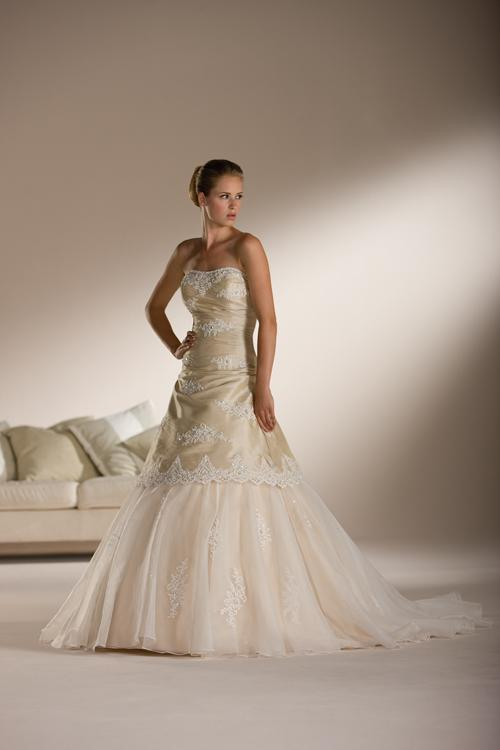 Strapless dress with lace and embroidery throughout the bodice.