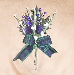 *stu 236 b/h* grooms scottish thistle buttonhole with black watch tartan ribbon