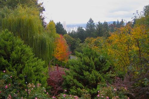 Joy—Oct21-Portland - 34