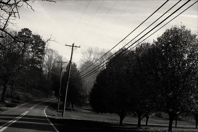2009-12-06-treesroad