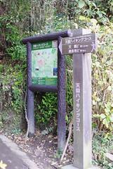 091207 天園ハイキングコースの出口