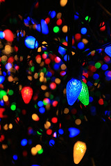 May Your Days Be Merry and Bright (laszlo-photo) Tags: christmas ohio holiday color colors lights cleveland merrychristmas nela nelapark andmayallyourchristmasesbewhite flickrthroughyoureyes