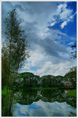 Lake Garden (isaaclsy) Tags: blue sky lake reflection tree green water clouds taiping lakegarden inthemood sigma2470mmf28exdgmacro impressedbeauty platinumheartaward platinumpeaceaward flickrunitedaward