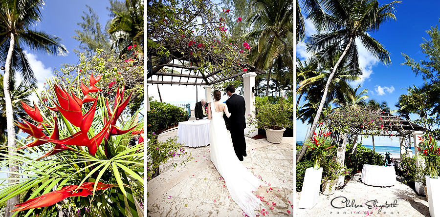 Ritz Carlton San Juan Puerto Rico destination wedding ceremony tropical beach palm trees red birds of paradise image