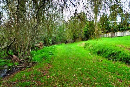 Rotorua City Ride 6