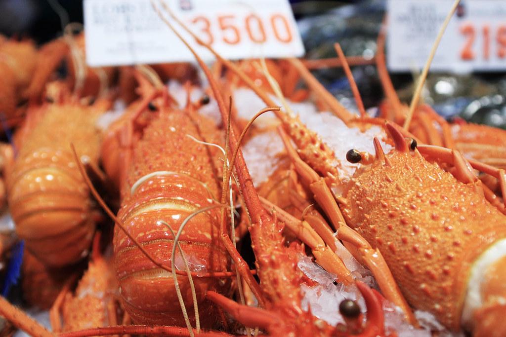 Jak w sklepie z zabawkami, czyli targ rybny w Sydney