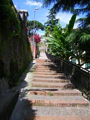 7] Savona (SV), Villetta: scalinate.   (mpvicenza) Tags: scale italia liguria sv escaleras savona villetta bellitalia desafiourbano orgogliosoitaliano exemplatyshots 121108249212