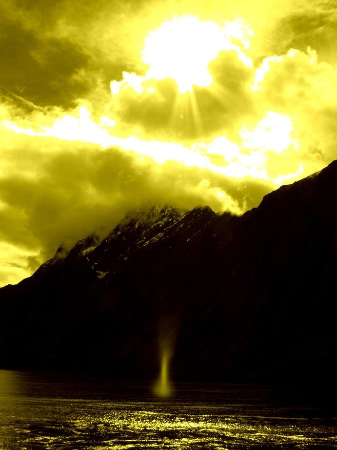 Nouvelle Zelande 2008 : milford sound #1