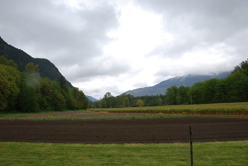 Cascadian Farm Lower Field