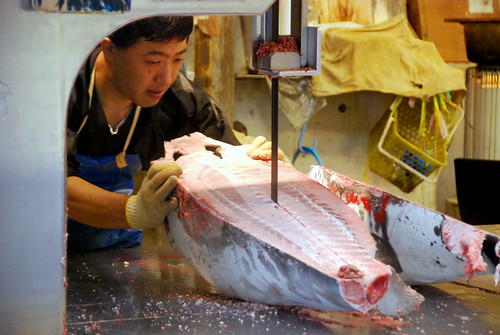 cutting tuna, tsukiji fish market