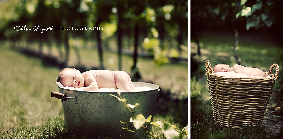 vineyard newborn baby girl portraits vintage photograph