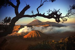 I've witnessed beauty (diankarl (www.diankarlina.com)) Tags: travel sky holiday nature silhouette sunrise indonesia landscape dawn volcano smog southeastasia smoke peak caldera malang bromo tengger mountainrange stratovolcano mountbromo eastjava gunungbromo kawah pananjakan diankarl diankarlina wwwdiankarlinacom