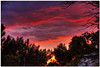 clouds in the evening.jpg (Father Tony) Tags: sunset summer southdakota landscape prairie hdr mcintosh cloudsandsky canonefs1755mmf28isusm canoneos50d ortoneffect redynamixplugin corsoncountysd