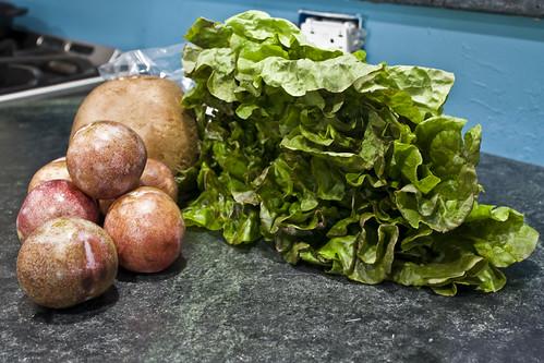 pluots lettuce portobello