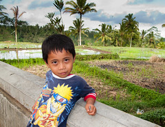 Balinese kid by a rice field, palms and some ducks (Pedro Nez) Tags: boy portrait bali field palms indonesia kid child rice retrato feld ducks reis palmeras portrt kind chico ente nio 2009 campos arroz bubbe patos balinese balines chiquillo