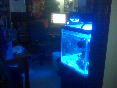 Crazy Illuminated Office