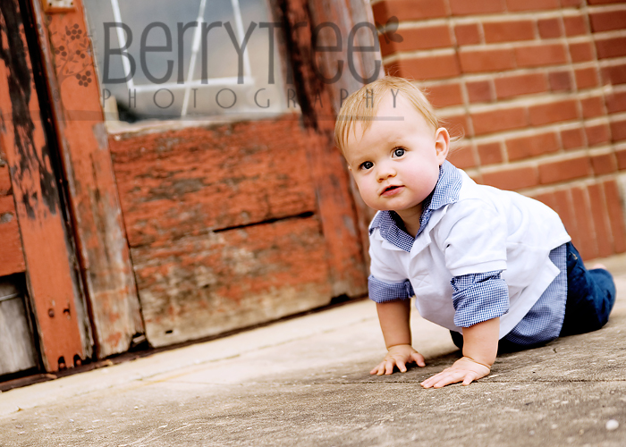 3940960156 27c39bcab3 o Little man!    BerryTree Photography  :  Child Photographer
