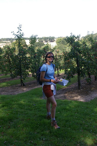 Checking the map in the apple orchard, Blean woods