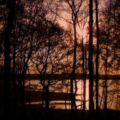 November (perseverando) Tags: november trees interestingness silhouettes reservoir lancashire rivington explore bolton pictureperfect mywinners platinumphoto infinestyle theunforgettablepictures goldstaraward perseverando magicunicornverybest