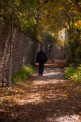 going out of focus (c-h-l) Tags: autumn trees light dog sun sunlight man fall leaves wall germany walking deutschland licht essen mood afternoon shadows path stones wand herbst atmosphere calm steine hund nrw serene mann sonne bltter bume schatten ruhrgebiet stimmung weg mauer gehen peacefull pfad mensch ruhrarea humen friedlich nachmittag ruhig nachdenklich sonnenlicht 18105mm nikond90