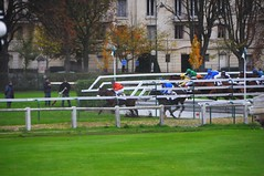 JP3_4943 (JPB93) Tags: horse paris france race jockeys horseracing obstacle turf chevaux paddock steeplechase hippodrome hurdle auteuil hippisme tribunes haies pesage