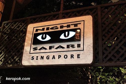 BJ Night Safari