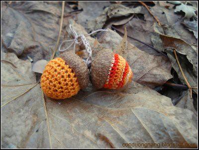 acorn 3e