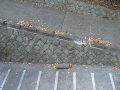 fallen street